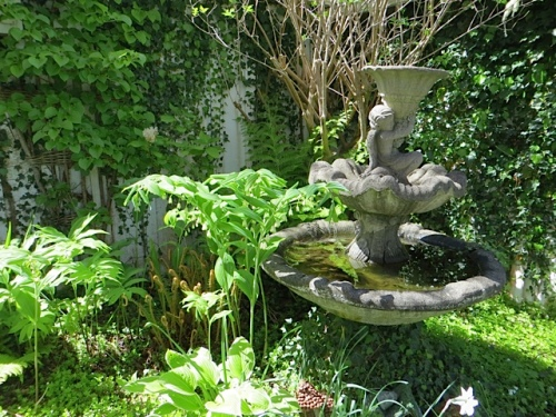 fountain, and solomon's seal.  I wish I had some of that plant!