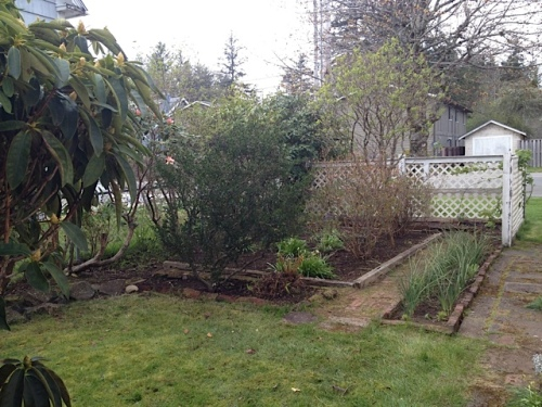 enclosed garden, west side of house, weeded and raked