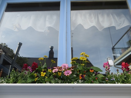 Susie's kitchen windowbox at the Boreas