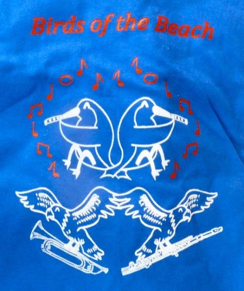 a band tee shirt