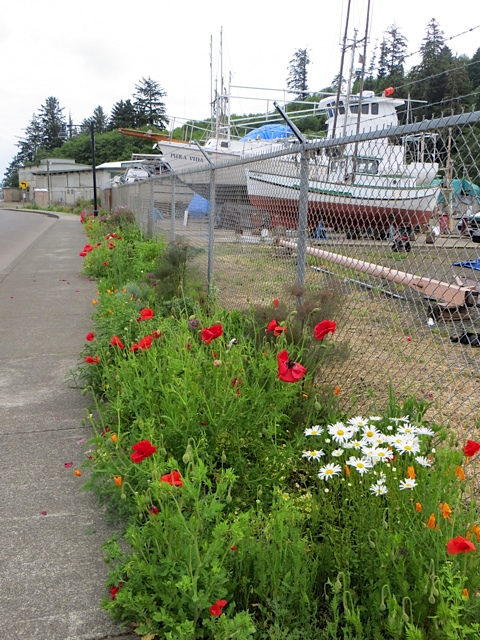 just south of the planter blocks, the boatyard garden