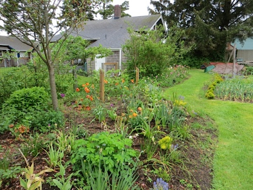 part of the flower border we made in fall of 2012