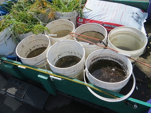 six burble buckets