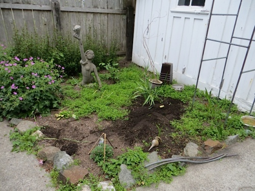 I did the level chickweed area...here, after I had started.
