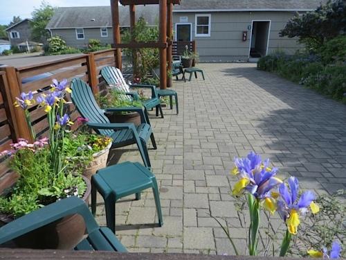 courtyard with Dutch Iris