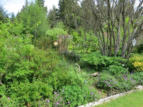 large garden beds