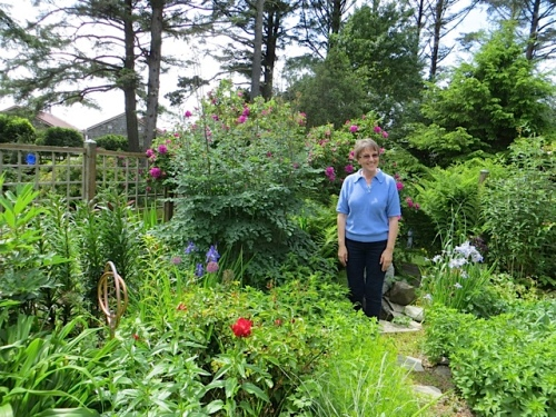 Mary C poses for me to show the height of Thalictrum 'Elin'