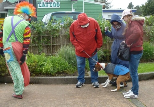 This dog was afraid of clowns...