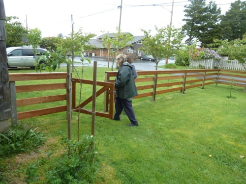 leaving Nancy's garden