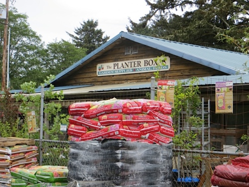 The Planter Box, where we got cosmos Sensation, Psyche, and Candy Stripe