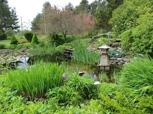 I do wish Allan and I had it in us to build a pond like this.  The gentle slope in this garden makes it look natural.