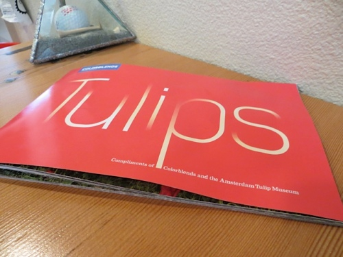 from Colorblends, a booklet with beautiful tulip photos