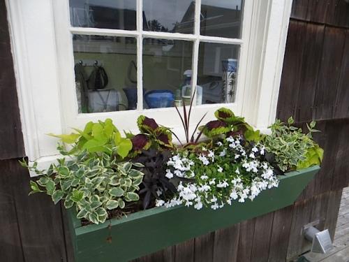 back porch windowbox