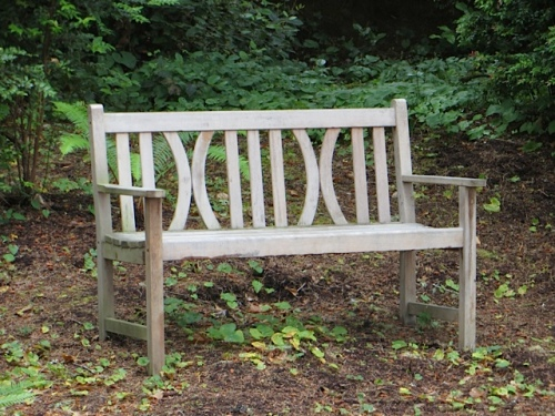 Now making a wonderful shady sit spot.