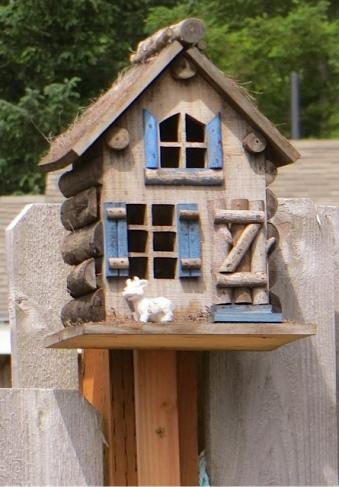 a bucolic birdhouse