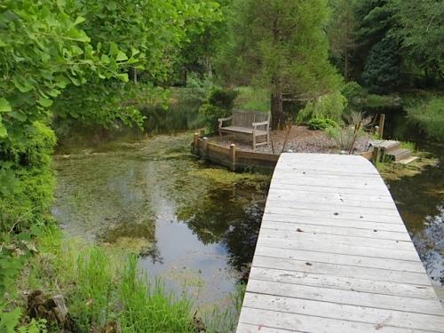 pond with island