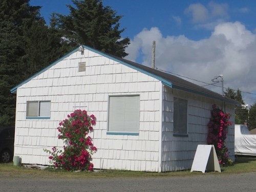 the two roses on the cottage, west and south sides