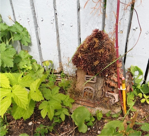 a fairy house by Erin's fence