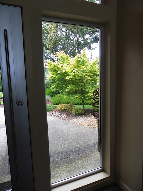 Here is the view from inside the front door of the Japanese maple