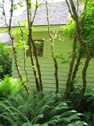 a garden of layered greens