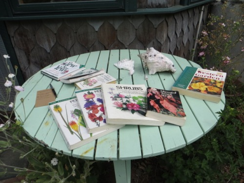 where I find a table of garden books and catalogs.