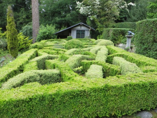 and the knot garden
