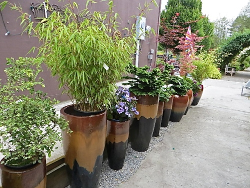 containers as I went in the back door of the main building to check out