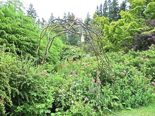 We walked alongside a tangled garden.