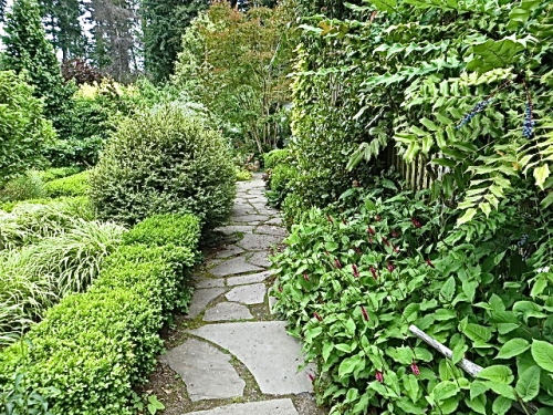 one of the nursery paths