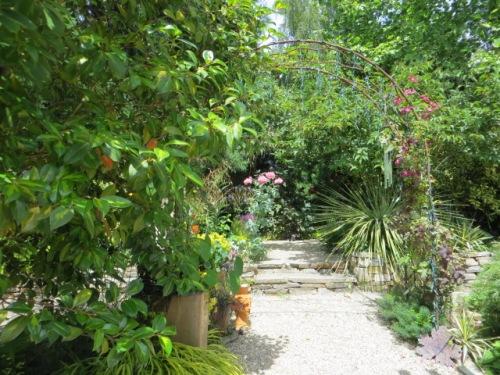 a sunny back garden