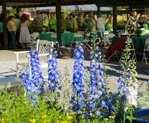 delphiniums and party tables