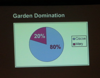 This garden division is about like me and Allan... if you count the lawn as part of his 20%.