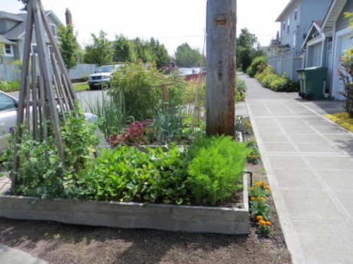 a veg parking strip bed