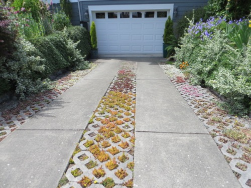 The driveway to an under house garage divides the front garden.