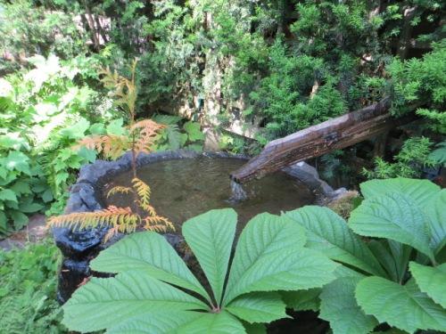 a hidden water feature