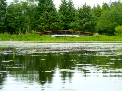 a bridge in a private garden