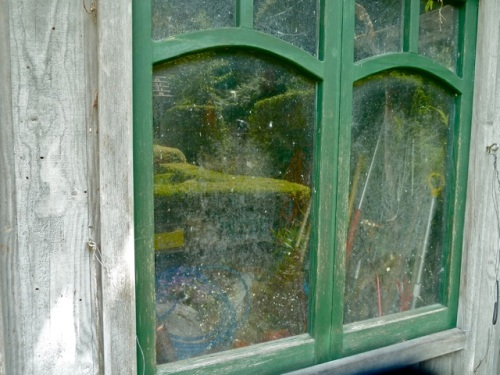 Allan's photo of the shed windows