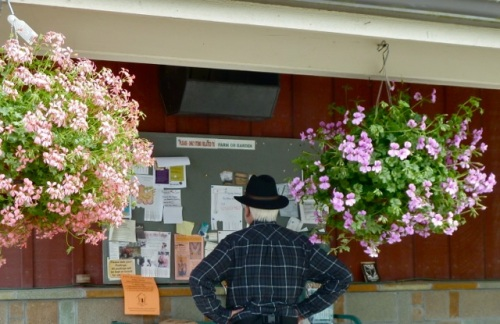 Allan's photo: a homey message board