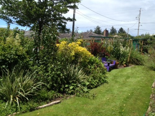 I felt I would so love to spend the weekend sitting on my own bench (between weeding sessions).