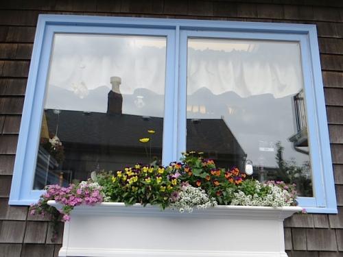above:  Susie's kitchen windowbox