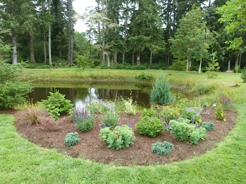 garden area 11 (which was being planted in Sept of '13, as I recall)