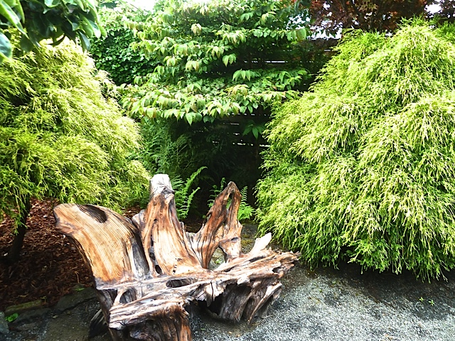 The driftwood bench is from one piece found buried in mud along Willapa Bay.