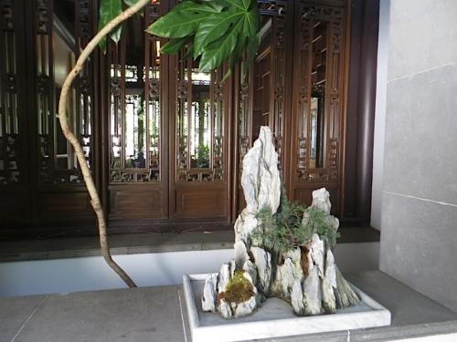 bonsai resting on a windowsill