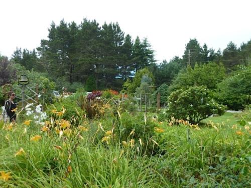 near the center of the garden