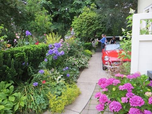 driveway garden!