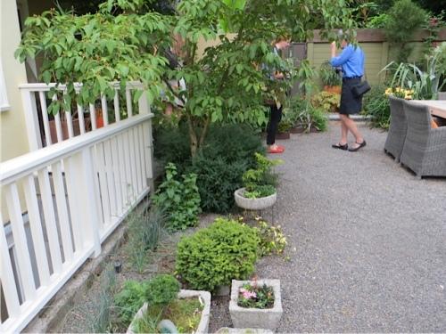 in Linda's back garden