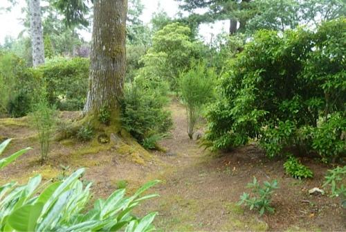 lower rhody grove