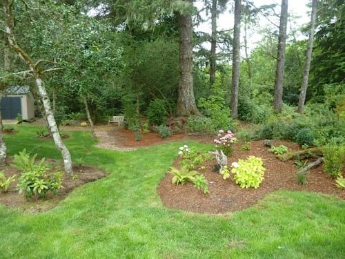 the holly/fern grove