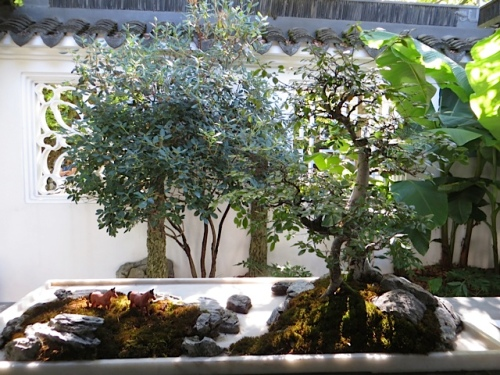another bonsai with little horses