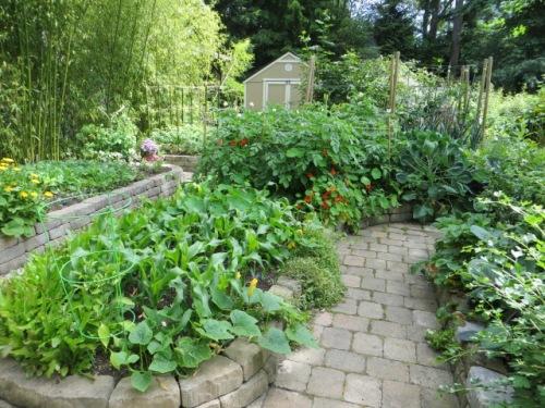 I find myself in a kitchen garden area.